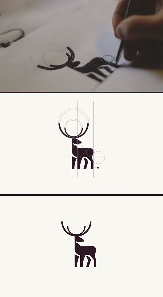 Circle animals by Tom Anders - Imgur
