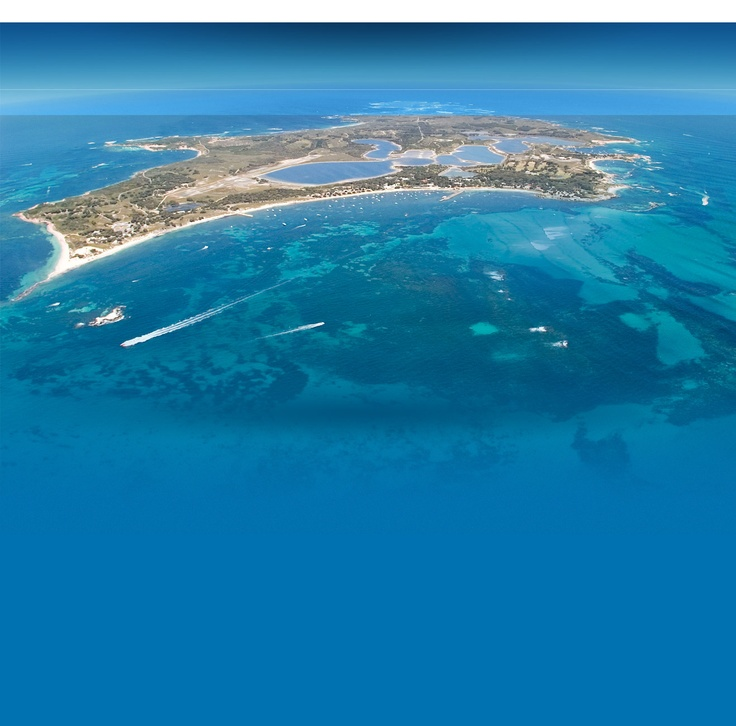 Home Rottnest Island Western Australia