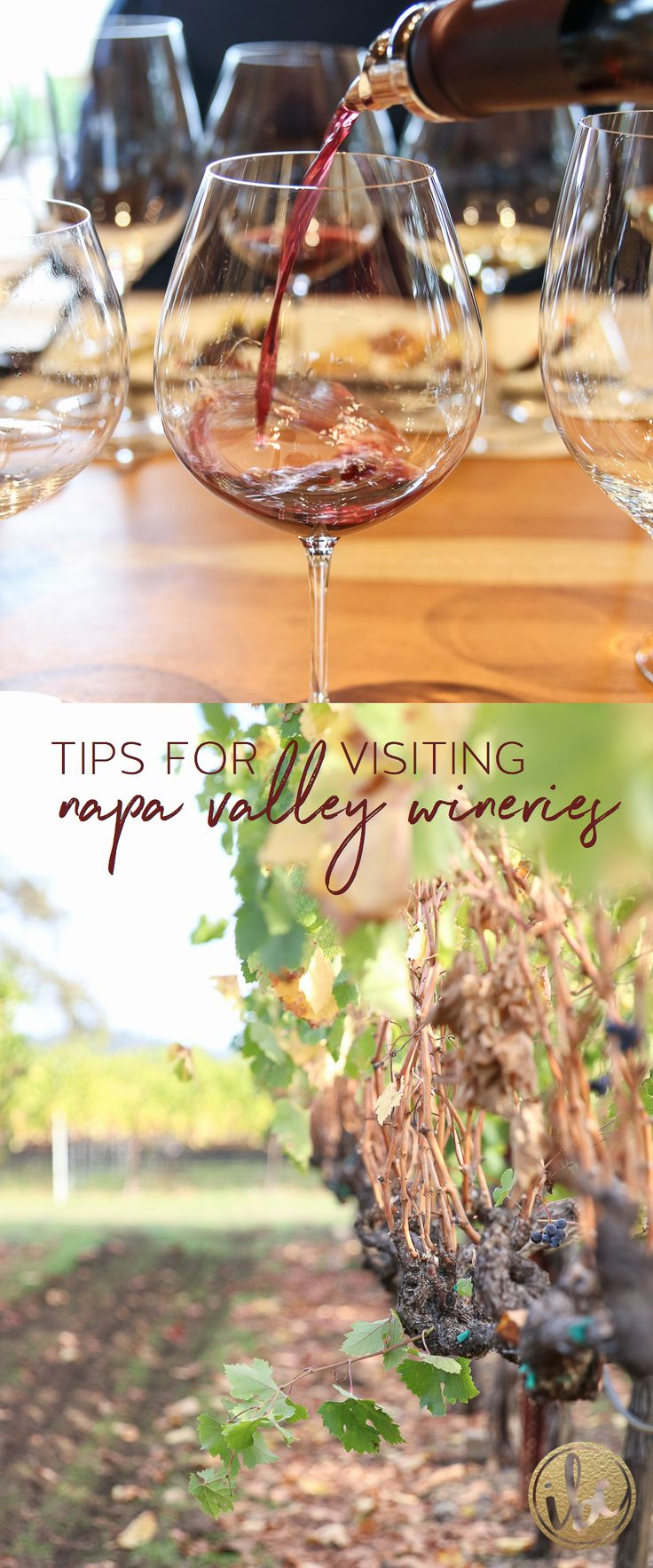 Tips and tricks - Wine Tasting in Napa Valley / travel guide