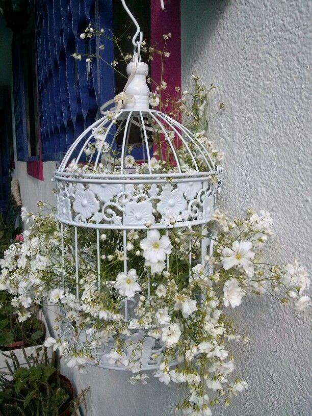 1000 id es sur le th me cages oiseaux d cor es sur for Cages a oiseaux decoratives