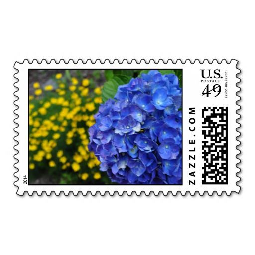 >>>This Deals          Gorgeous Blue Hydrangea Offset by Yellow Stamp           Gorgeous Blue Hydrangea Offset by Yellow Stamp online after you search a lot for where to buyShopping          Gorgeous Blue Hydrangea Offset by Yellow Stamp Review from Associated Store with this Deal...Cleck Hot Deals >>> http://www.zazzle.com/gorgeous_blue_hydrangea_offset_by_yellow_stamp-172637595208045179?rf=238627982471231924&zbar=1&tc=terrest