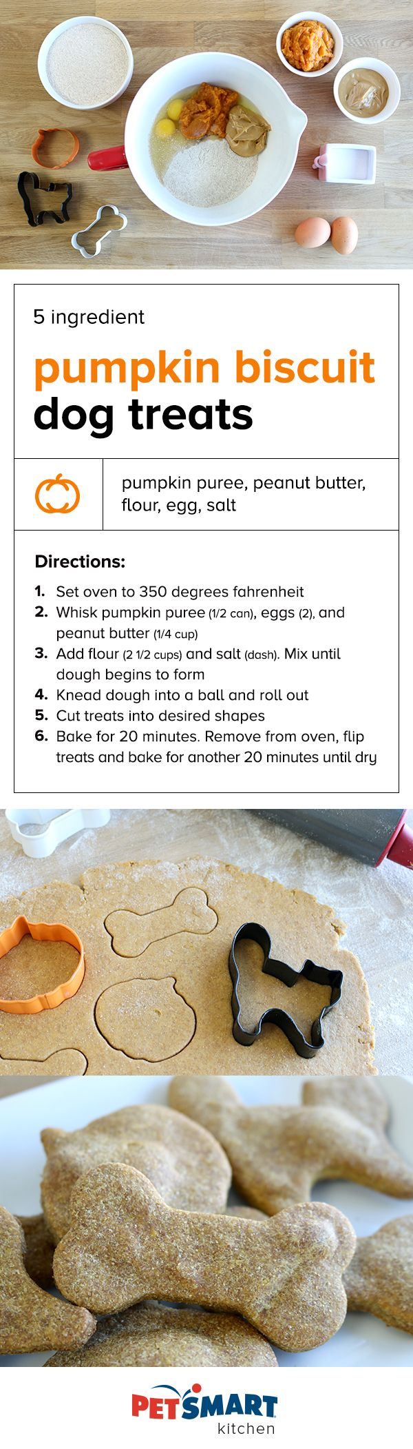 5-Ingredient Pumpkin Biscuit Dog Treats. Whip up these easy treats for your pumpkin loving pups! Recipe inspired from Will Cook from Friends blog. Note on ingredients, any peanut butter used must be free of xylitol, an artificial sweetener which is highly toxic to pets. Before preparing, make sure your dog does not have allergies to any of the ingredients listed above and are fat-tolerant.