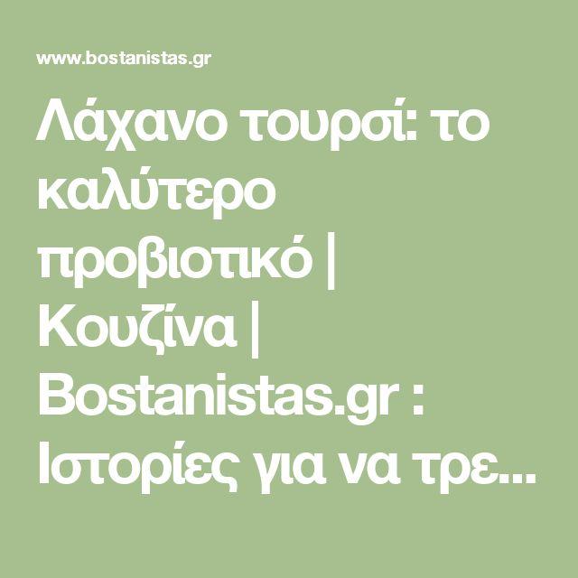 Λάχανο τουρσί: το καλύτερο προβιοτικό | Κουζίνα | Bostanistas.gr : Ιστορίες για να τρεφόμαστε διαφορετικά