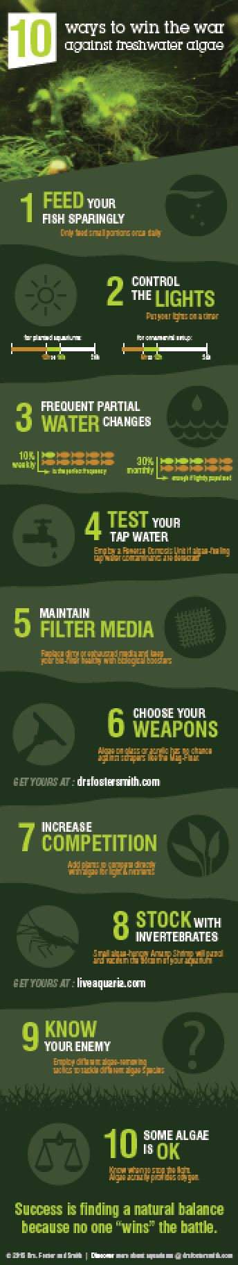 10 ways to control your fish tank against freshwater algae - a resource from www.tropicalfishcareguides.com