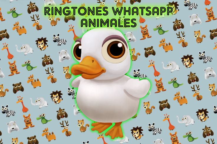 Ringtones Whatsapp Animales