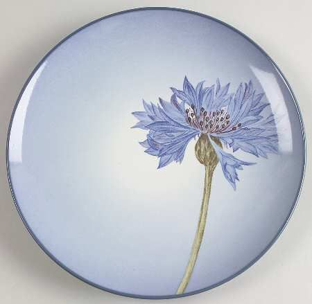 Love this plate, Noritake Colorwave Blue Cornflower.