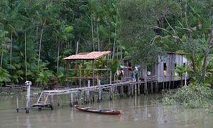House on stilts, near Belem
