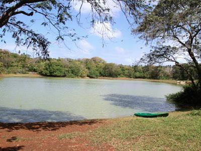 La Laguna Big Pond, San Andrés Islas - Colombia   http://www.sanandresislas.com.co/la-laguna-big-pond-san-andres