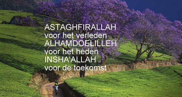Citaten Uit De Nederlandse Literatuur : Best nederlandse quotes islam images on pinterest