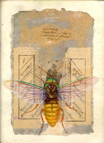 pamphilidae - ergin inan 2001