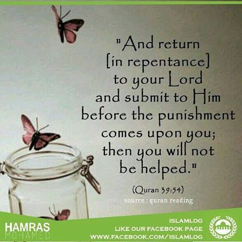 - Receive free islamic messages in WhatsApp Send JOIN to 009190 48363514 in WhatsApp then inshaallah daily you get many islamic messages including videos and photos Also check our page fb.com/islamlog by islam_log - In sha ALLAH Now you get updates from my app and social pages please follow and like Android app : just click this link and fast download our app www.goo.gl/Rr5c4X ( size almost 0.7mb only ) Facebook : fb.com/islamlog Twitter : http://twitter.com/ownislam2 Blog…