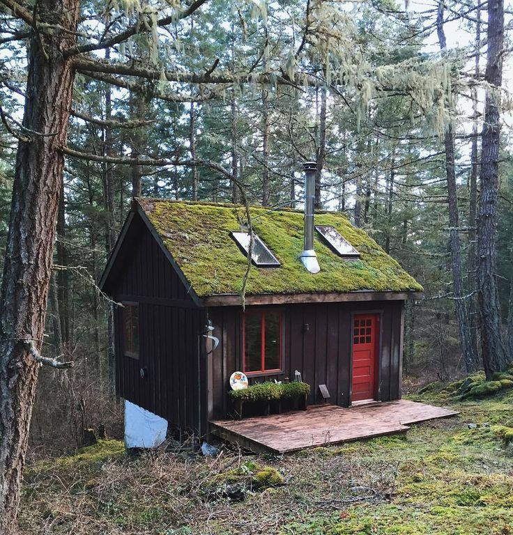 Erotic cabins