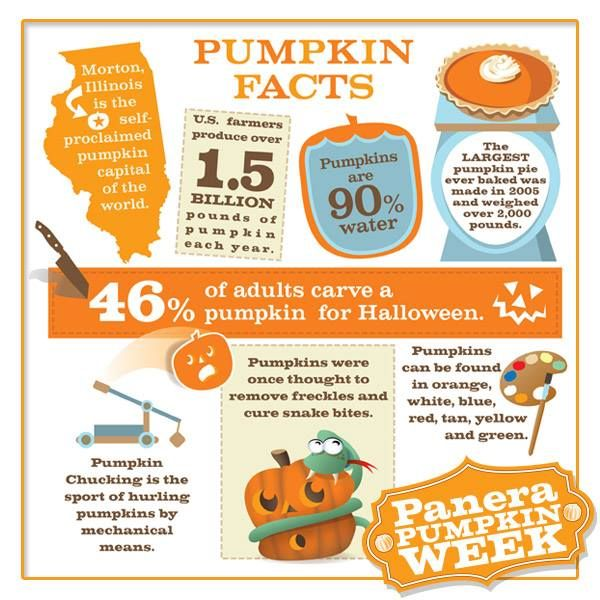 Check out these pumpkin facts and comment with your fave (or share a new one) on this Facebook post for a chance to win a Panera Bread gift card.  Sweepstakes Rules: http://on.fb.me/180z9o5