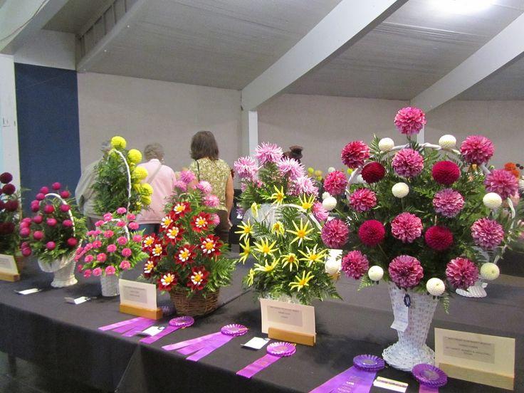 dahlia arrangements in basket - Google Search