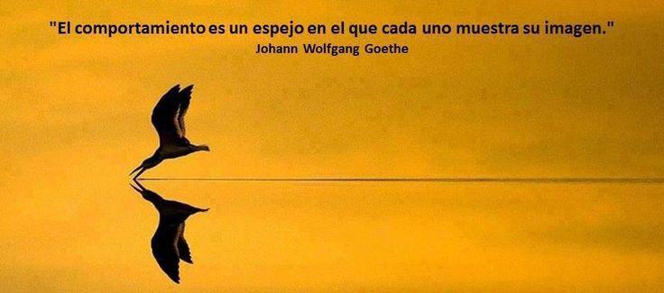 Goethe señala, con esta frase, la ineludible conexión entre hacer y parecer. Es el comportamiento el que muestra a las personas y habilita no sólo su aparecer sino el percibir de los demás. Hacien...