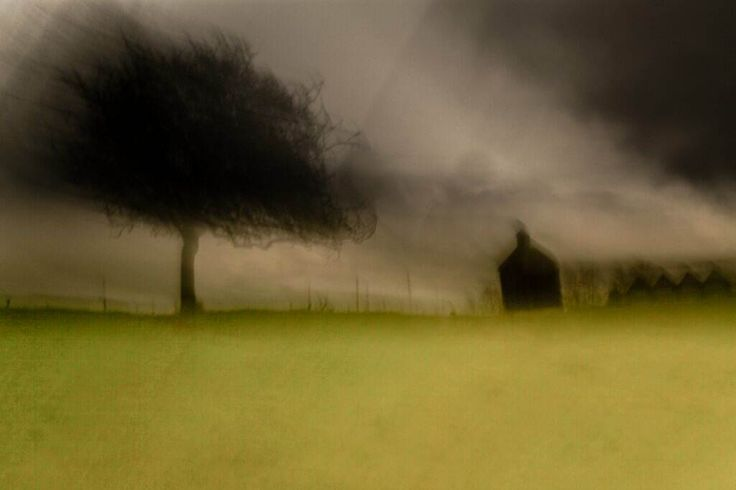 Intentional Camera Movement photography by Chris Friel
