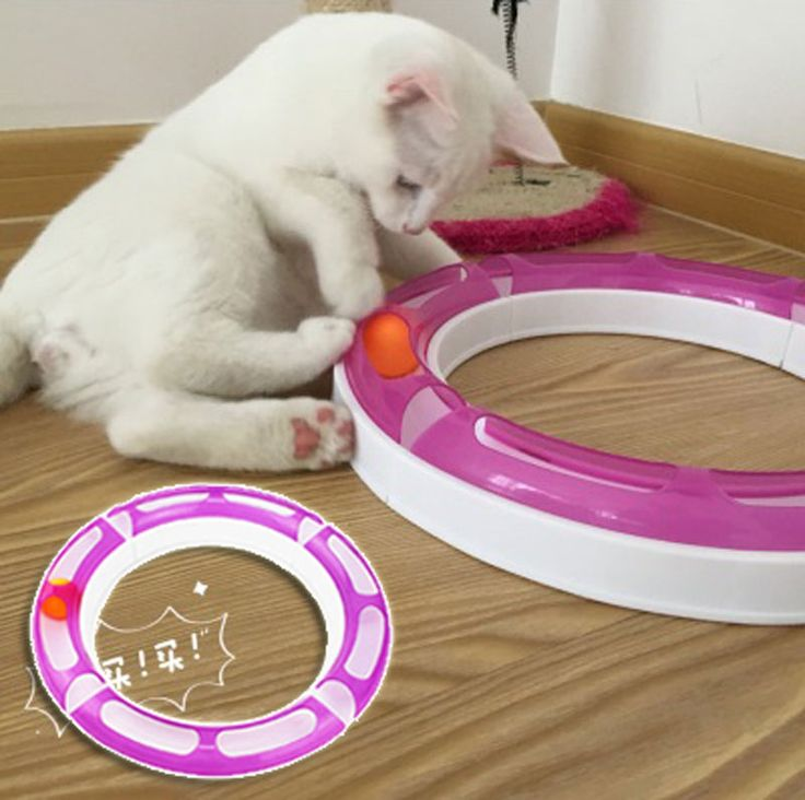 Cheap toy candy, Buy Quality toy garbage trucks for sale directly from China toy globe Suppliers:   New Fun Cat Pet Track and Ball Toys Chase