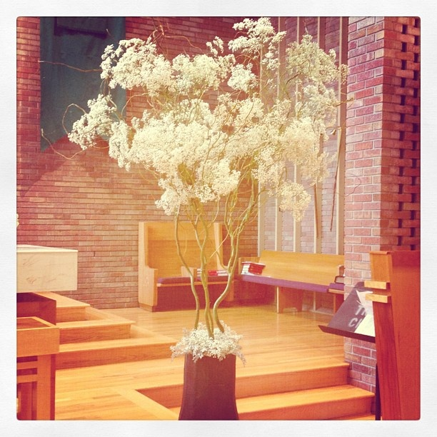 Wedding Altar Trees: 128 Best Wedding Flowers Images On Pinterest