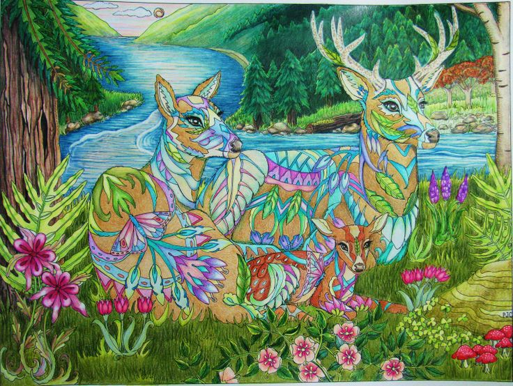 Also From Color Me 2 Coloring Books Available At Colormeyourway