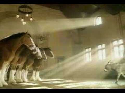 Budweiser Commercial - Clydesdales Donkey.