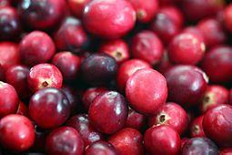 Cranberry    Cranberries   Arandano Rojo   Oxicoco   arando-vermelho    mirtilo-vermelho    airela   Canneberge   Veenbes