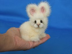 Mink bunny, oh I want one.