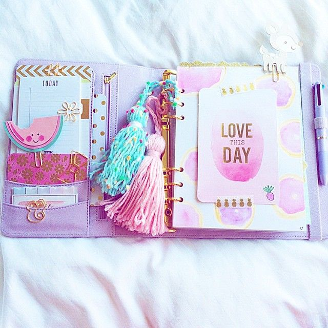 Posts you've liked | Websta theangelshoppe I love watermelons! What summer clips would you like to see? Our clips always look so pretty in @princesaplans' planners!