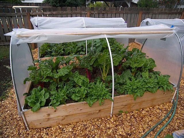 Garden Covers For Vegetables Part - 40: Raised Bed Covers Idea