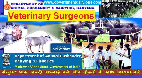 Haryana Pashudhan Recruitment 2017 Application 280 Veterinary Surgeon Posts