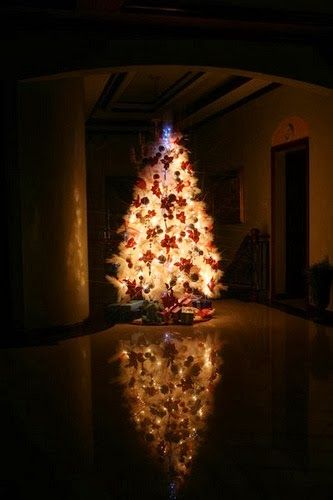 Christmas Decorations At Haskins : Images about o christmas tree on