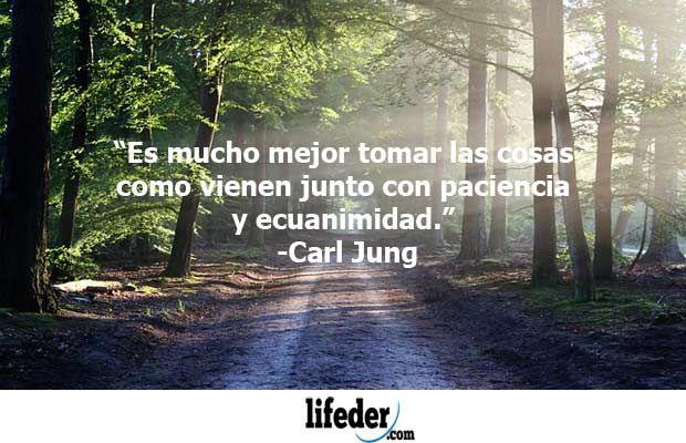 Te dejo las 70 mejores frases de Carl Gustav Jung, médico psiquiatra, psicólogo y ensayista suizo, fundador de la psicología analítica y figura importante del psicoanálisis.Jung(26 de Julio de 1875-6 de Junio de 1961) fue uno de los mejores psiquiatras de todos los tiempos, pionero de la...