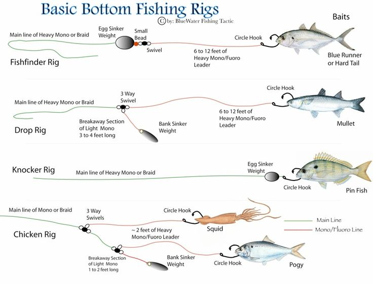 82 best images about fishing rigs knots on pinterest for Best catfish rig for bank fishing