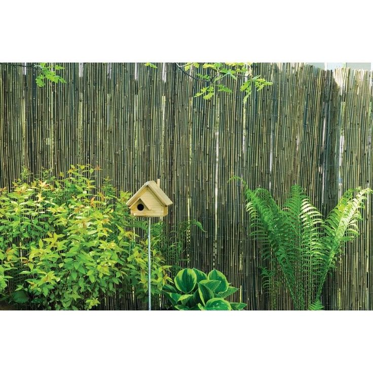 Shop TWD 4.92 Ft H X 16.4 Ft L Natural Looking Screen Border Fence
