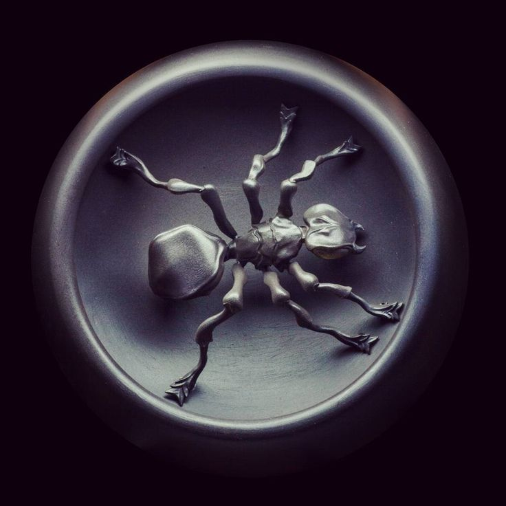 jewellery_planetPresent from our team @jewellery_planet ,@goncharov.igor ,@goldboy750 и Нетбаев Миха to The Prodigy team. Wall figurine - The Ant / Подарок от нашей команды : @jewellery_planet,@goldboy750,@goncharov.igor и Недбаев Михаил - группе the Prodigy .Настенная статуэтка - Муравей #theprodigyofficial #theprodigy#liamhowlett #keithflintofficial #keithflint #maximreality #robholliday #leocrabtree ##Moskow #Russian #exclusive #ant##wallfigutine#2016