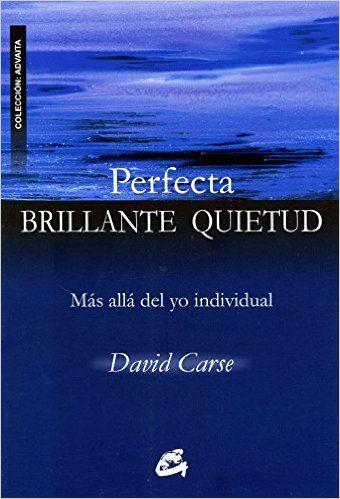 PERFECTA BRILLANTE QUIETUD: MÁS ALLÁ DEL YO INDIVIDUAL ADVAITA: Amazon.es: David Carse, JORGE VIÑES ROIG: Libros