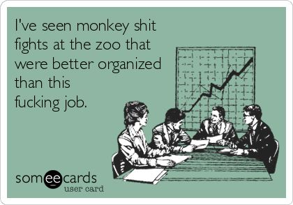 I've seen monkey shit fights at the zoo that were better organized than this fucking job.