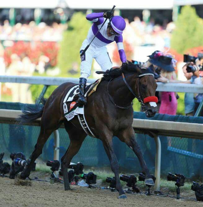 Congrats, Nyquist, in winning the 142nd Kentucky Derby!Nyquist is still perfect.  The bay colt won the 142nd Kentucky Derby on Saturday in front of a crowd of 167,227 at Churchill Downs.