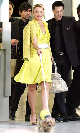 Appearing as Samantha Jones in SATC, Kim Cattrall -- and her pup! -- brightened up in sunny yellow outfits while filming on Rodeo Drive