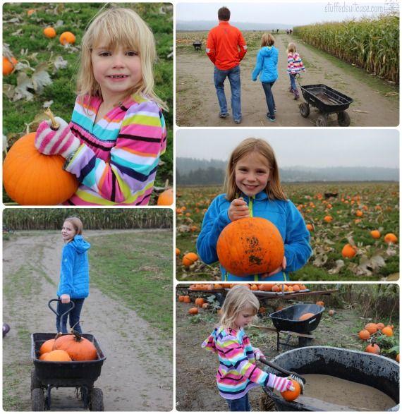Pumpkin Patch Seattle Weekend Fall Family Fun Bailey Vegetables Snohomish County WA StuffedSuitcase.com