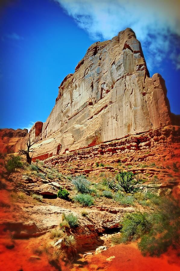 ✯ Rusty Fin in Arches National Park, Utah