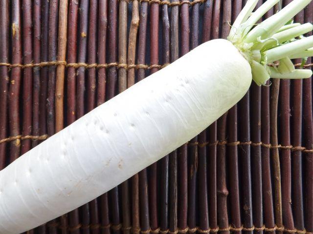 森下敬一 『食べもの健康法』●大根 ナマでよし、乾燥させてよし、煮てよし、根も葉もすばらしい薬効を持っている大根は、大変に重宝な野菜である。 冬大根は、ふろふき、おでん、鍋物などにすると特別の味わいがあるけれど、薬効を得るには「ナマが一番」なのだ。 大根おろし、または漬物として用いるのが望ましい。 大根おろ