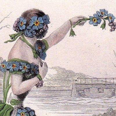 Gravure-XIXe-Myosotis-Vergissmeinnicht-Fleur-Flower-Jean-Jacques-Grandville