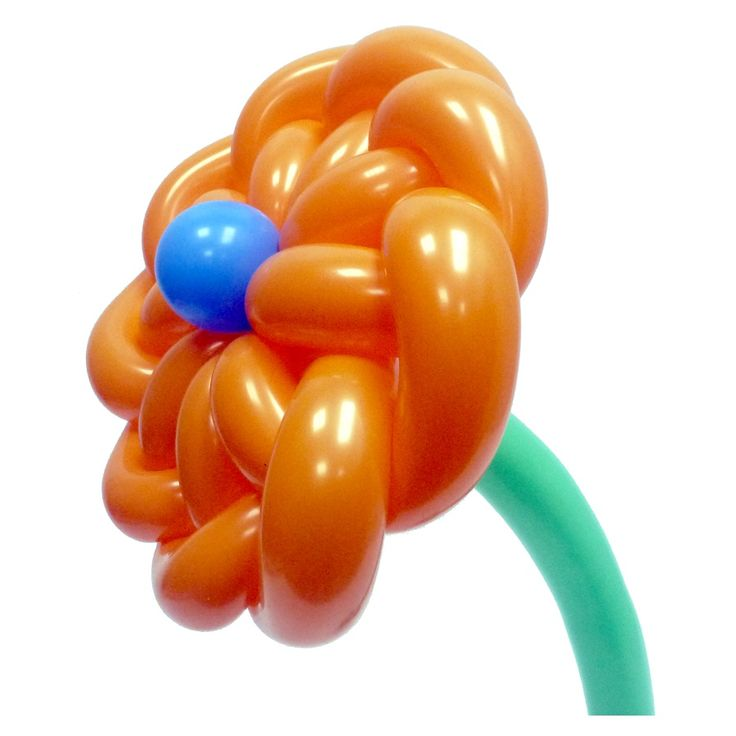 Циния - цветок из воздушных шаров Видео инструкция по изготовлению: https://youtu.be/aKDKpzFhANM Ключевые Слова: цветы из воздушных шаров цветок из ШДМ flower from balloons