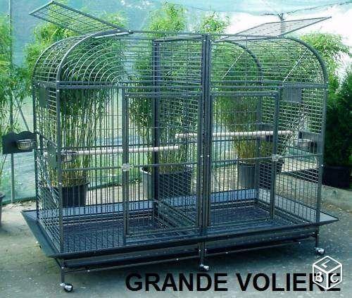 Voliere GEANTE cage ara BIG cage gris du gabon TOP