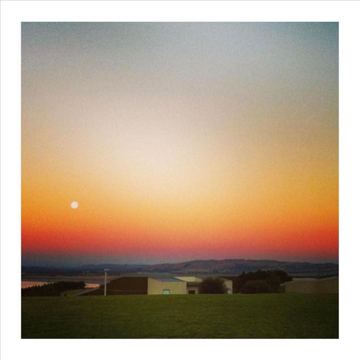 Moonrise #magical #silverwaterresort @hotelphotographer