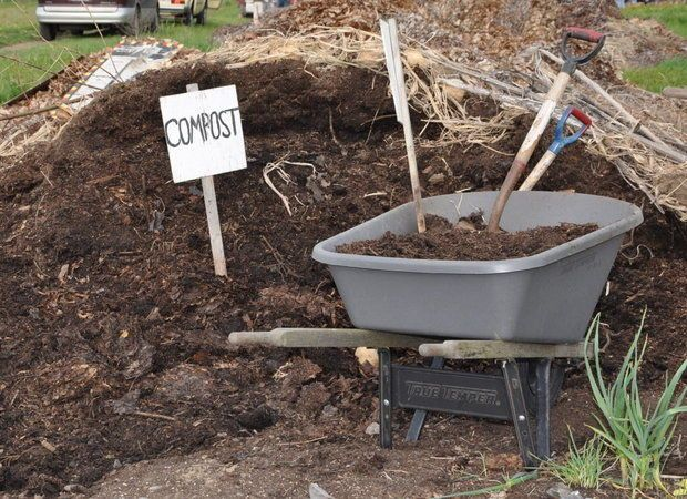 All your compost questions, answered.