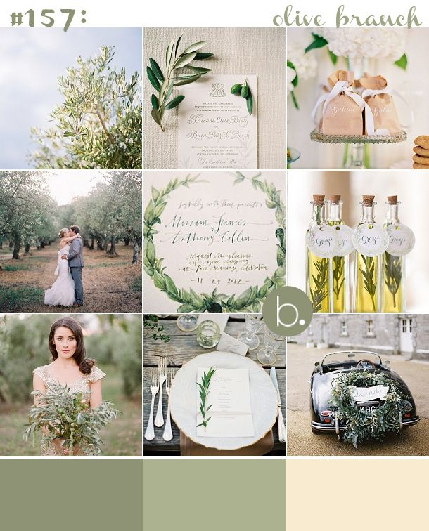 olive branch inspiration board, perfect for weddings in the Tuscan countryside