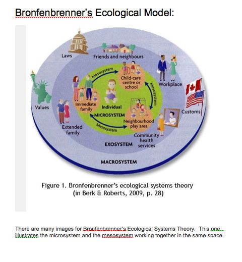 Ecological systems theory was developed by Urie Bronfenbrenner. He divided the environment into five different levels. The microsystem is the most influential, has the closest relationship to the person, and is the one where direct contact occurs. The mesosystem consists of interactions between a person's microsystems.