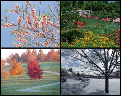 The Arboretum State Botanical Garden of KY boast 100 acres of year-round color and plants. Open from dawn to dusk daily.