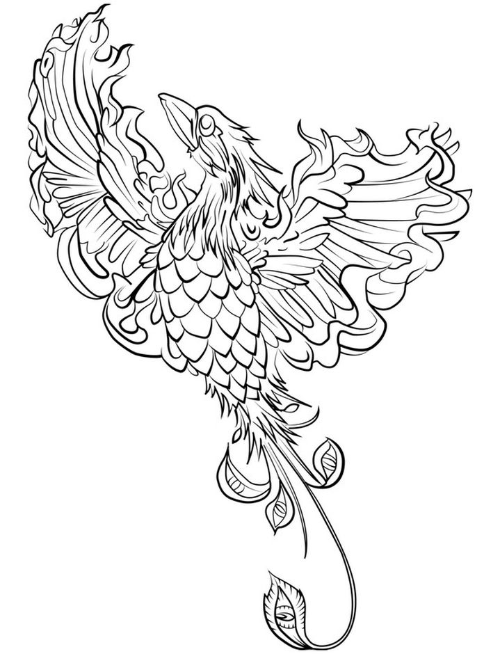 printable fantasy creatures coloring pages | phoenix - hard coloring pages of mythical animals ...